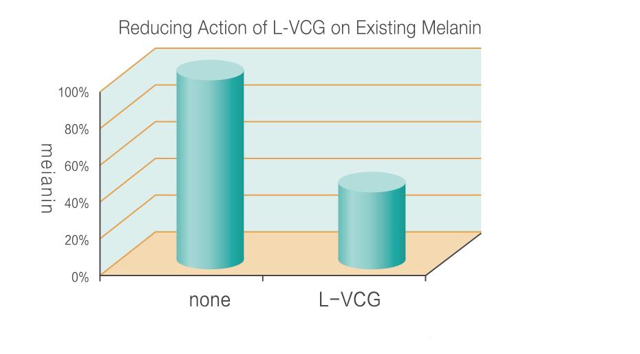 L-VCG
